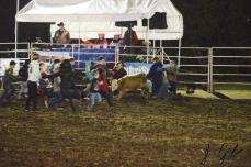 IL rodeo0039