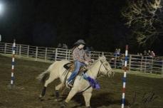 IL rodeo0114