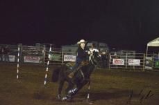 IL rodeo0211