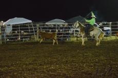 IL rodeo0453