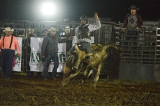 IL rodeo0836