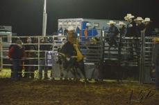 IL rodeo0846