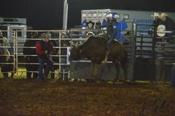 IL rodeo0876