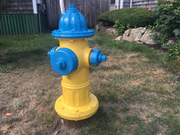Yellow_and_Blue_Fire_Hydrant.jpg
