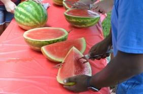 Watermelon Festival7-21-2018 1-49 PM1011
